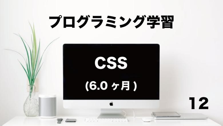 プログラミング学習「CSS」6.0ヶ月 (No.12)